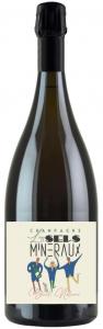 """Champagne """"Les Sels Minéraux"""" Terra Vitis Brut Nature - Magnum"""